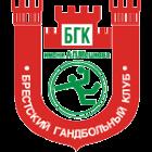 Meshkov Brestlogo