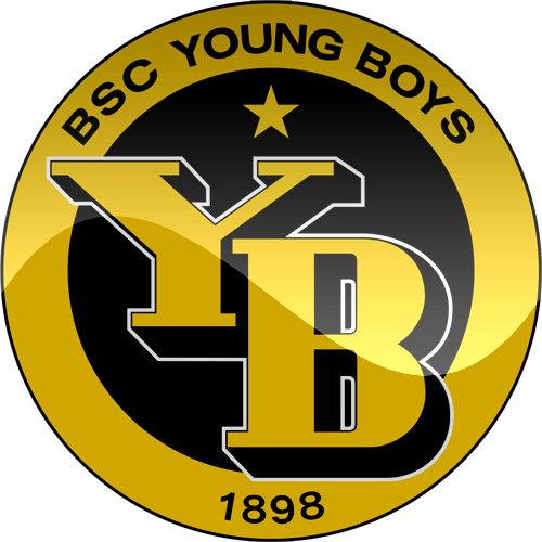 Young Boyslogo